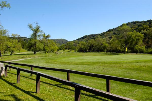 4603 Mira Loma St Castro Valley, CA 94546